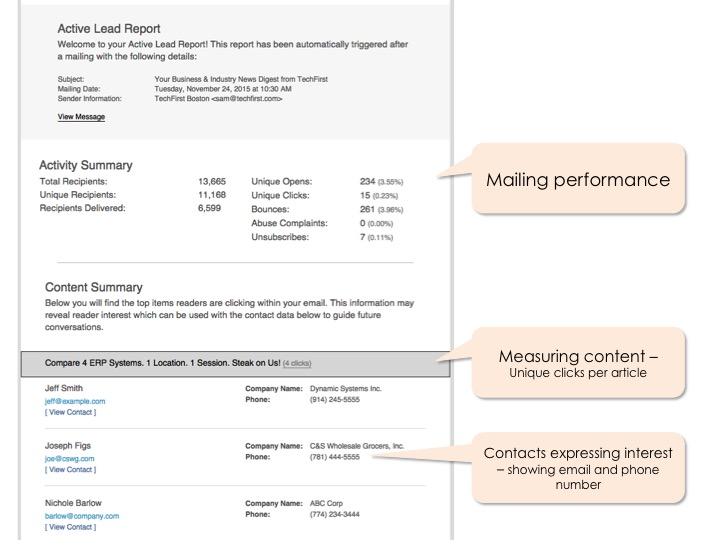 Anatomy of a Active Lead Report